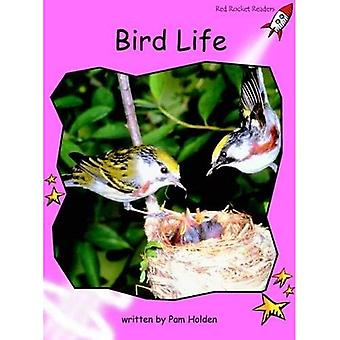 Bird Life: Pre-reading (Red Rocket Readers: Non-fiction Set B)