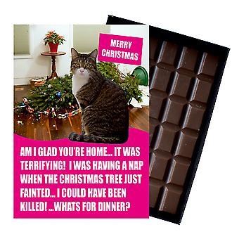 Brown tabby Cat Christmas present julklappar för kattälskare boxed choklad gratulationskort