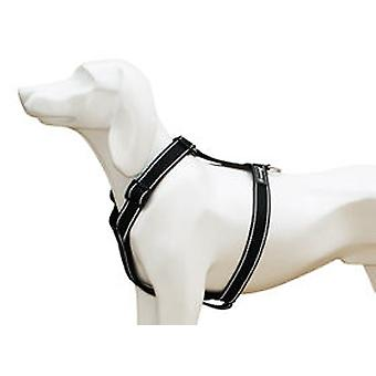 Freedog Harness Comfort Reflective Black (Dogs , Walking Accessories , Harnesses)