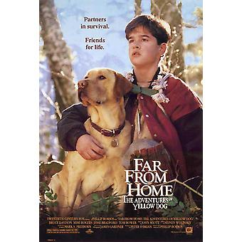 Far from Home The Adventures of Yellow Dog Movie Poster (27 x 40)