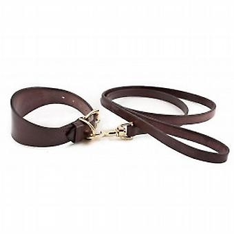 English Bridle Collar & Lead-brown
