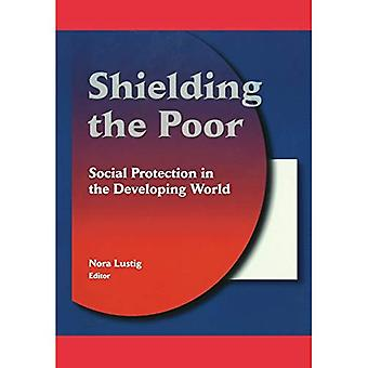 Blindage des pauvres : Social Protection in the Developing World
