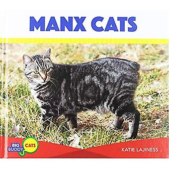 Manx chats (Buddy gros chats)