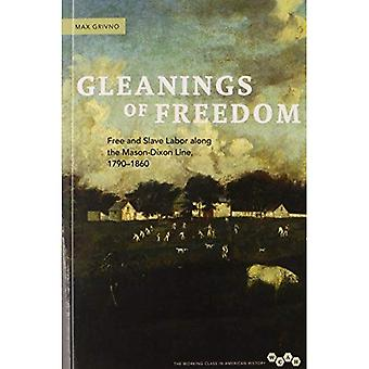 Gleanings of Freedom: Free and Slave Labor Along the Mason-Dixon Line, 1790-1860 (Working Class in American History)
