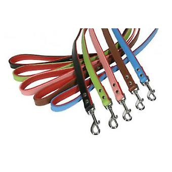 Doggy Things BONES CORREA AZUL TALLA 120/2,54 CM/1  (Dogs , Walking Accessories , Leads)