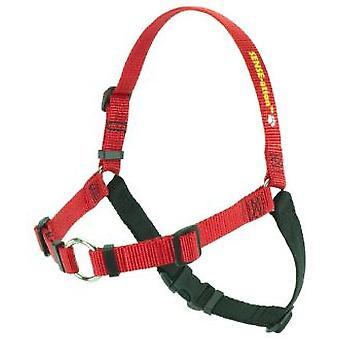 Softouch Harness Sense-ation Red (Dogs , Walking Accessories , Harnesses)