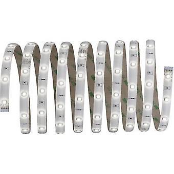 Paulmann LED strip + plug 12 V 300 cm Neutral white YourLED 70593