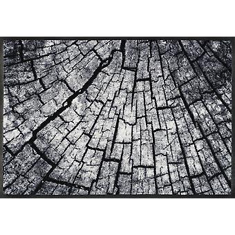 wash+dry Schmutzmatte Timber 50 x 75 cm waschbare Fußmatte