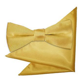 Gold-Plain Satin Krawatte und Einstecktuch für jungen eingestellt