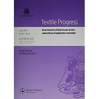 Vurdering av sentrale problemstillinger i fargeleggingen Polyester materiale