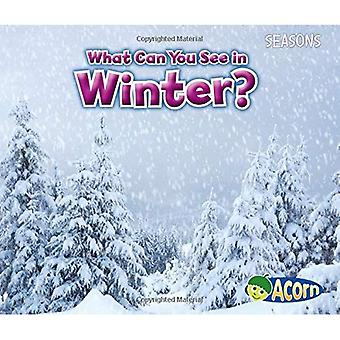What Can You See in Winter? (Seasons (Heinemann))