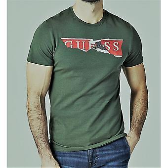 Предполагаю, что зеленый разорвал логотип T-shirt