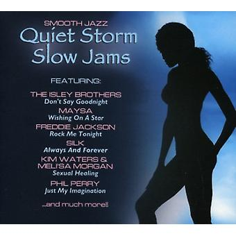 Quiet Storm Slow Jams - Quiet Storm Slow Jams [CD] USA import