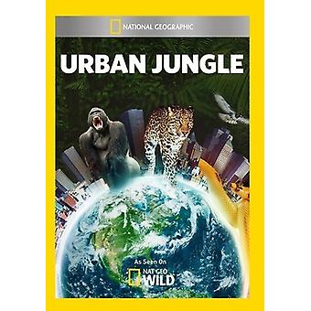 Urban Jungle [DVD] USA importieren