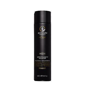 Paul Mitchell Awapuhi Wild Ginger Spiegel glatt Shampoo 250 ml