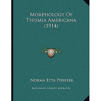 Morphology of Thismia Americana (1914)