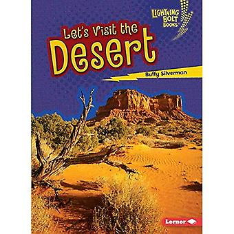 Let's Visit the Desert (Lightning Bolt Books Biome Explorers)