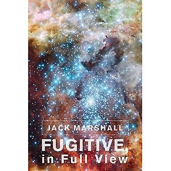 Fugitive, in Full View