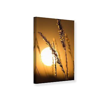 Canvas Print Romantic Sunset
