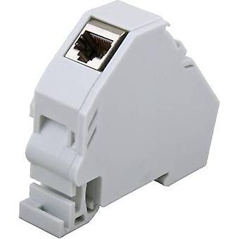 Network outlet DIN rail Unequipped EFB Elektronik ET-25186.V2 Light grey