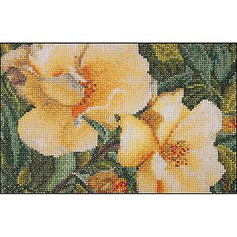 Rosa Hugonis On Aida Counted Cross Stitch Kit-6.75