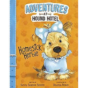 Nostalgia Herbie (aventuras en el Hotel de Sabueso)