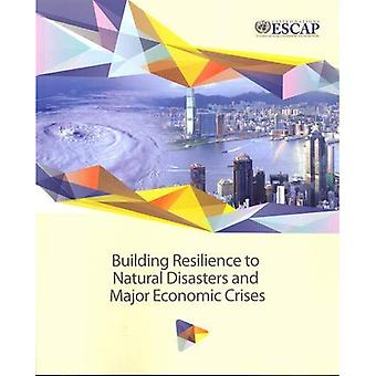 Building Resilience to Natural Disasters and Major Economic Crises