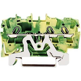 PG terminal 5.20 mm Pull spring Configuration: Terre Gre