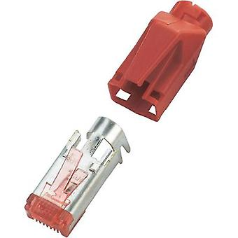 Hirose Electronic TM21 mains Plug RJ45 For CAT 6 (Gigabit) Red