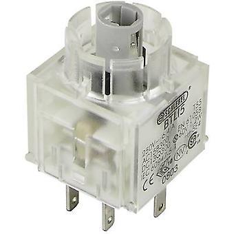 Contact + bulb holder 2 makers momentary 250 V Schlegel BTLI5 1 pc(s)