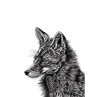 Fox art print Fuchs Lucy Francis small format