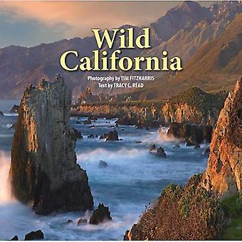 Vilda California