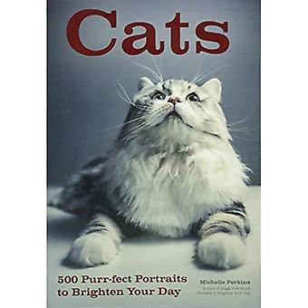 Cats: 500 Purr-Fect Portraits to Brighten Your Day
