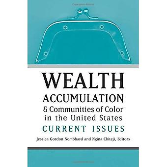 Wealth Accumulation and Communities of Color in the United States: Current Issues