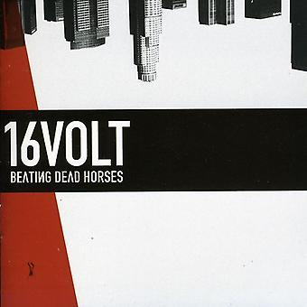 16Volt - Beating Dead Horses [CD] USA import
