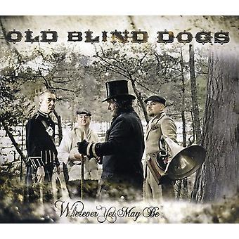 Gamle blinde hunde - hvor du kan være [CD] USA import