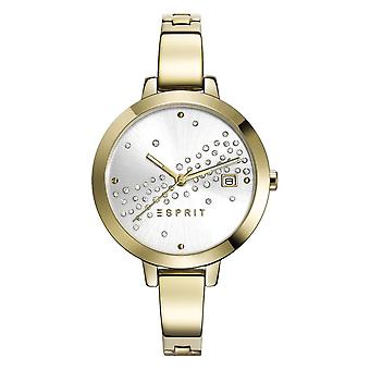 ESPRIT ladies watch bracelet watch Amelia dazzle stainless steel gold ES108482003