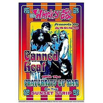 Canned Heat 1968 Poster Print by Dennis Loren (14 x 20)