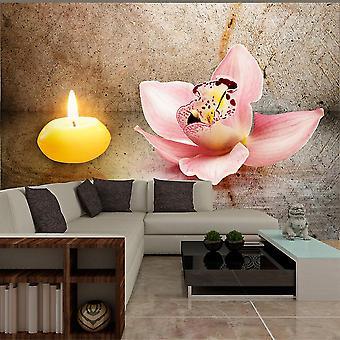 Wallpaper - Romantic evening
