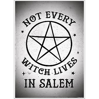 Grindstore Not Every Witch lebt in Salem Mini Poster