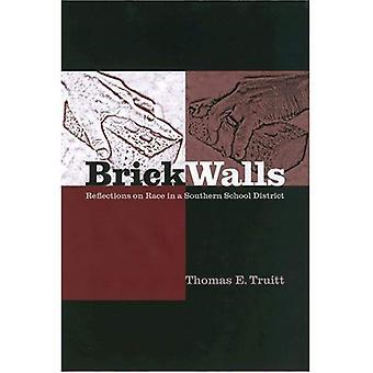 Murs de briques: Réflexions sur la Race dans un District scolaire du Sud