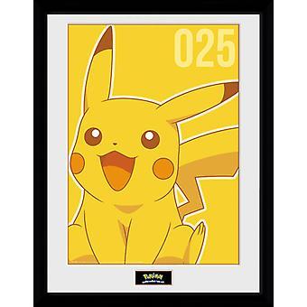 Stampa Mono collezionista Pokemon Pikachu