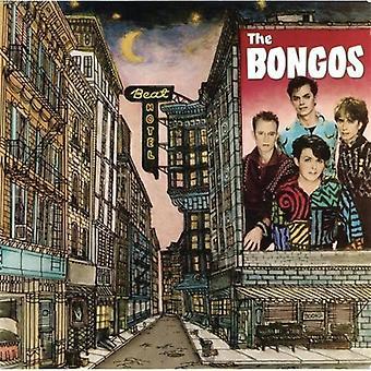 Bongos - Beat Hotel [CD] USA importerer