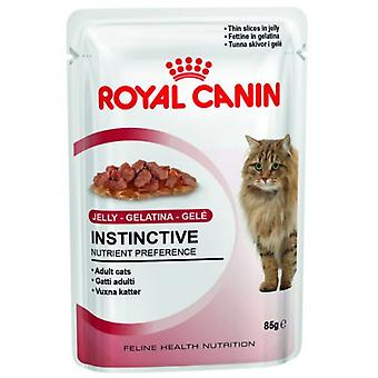 Royal Canin Adult Instinctive in Gelatine (Cats , Cat Food , Wet Food)
