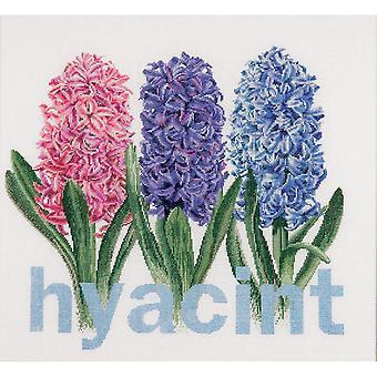 Hyacinth On Aida Counted Cross Stitch Kit-16.5