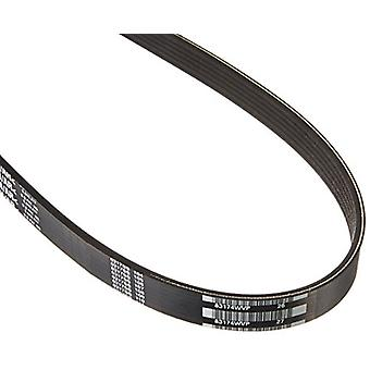 Motorcraft JK6881BB V-Belt