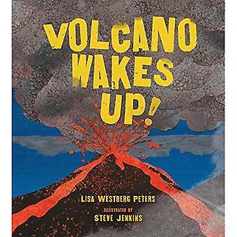 Vulcano si sveglia!