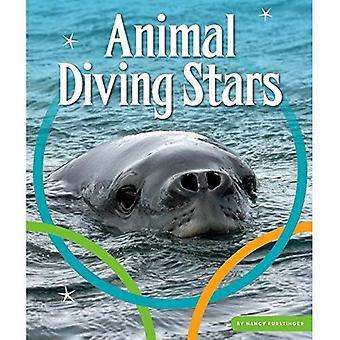 Animal Diving Stars (Animal� Olympics)
