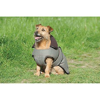 Manteau de chien de tweed de Weatherbeeta - Tweed d'olive