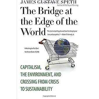 Bron vid kanten av världen: kapitalism, miljö och passage från kris till hållbarhet